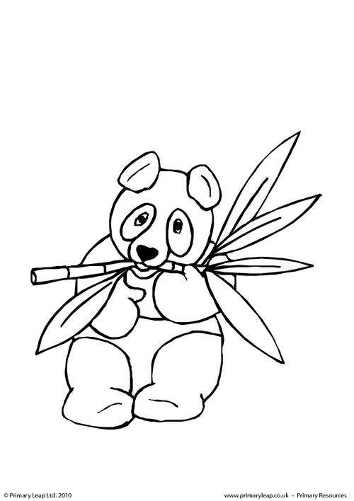 panda colouring page colouring picture panda age all ages