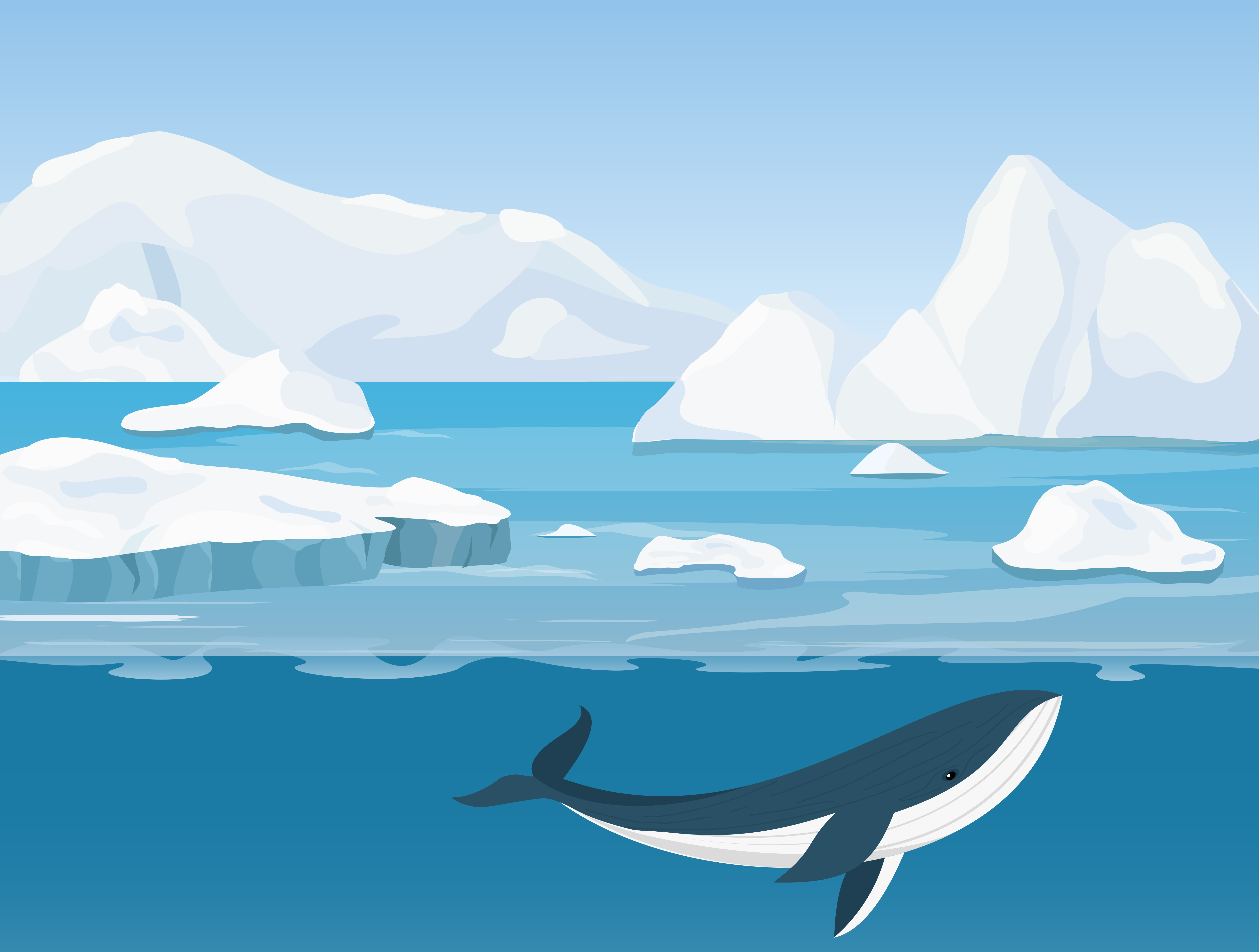Geography Arctic Ocean Level 2 Activity For Kids
