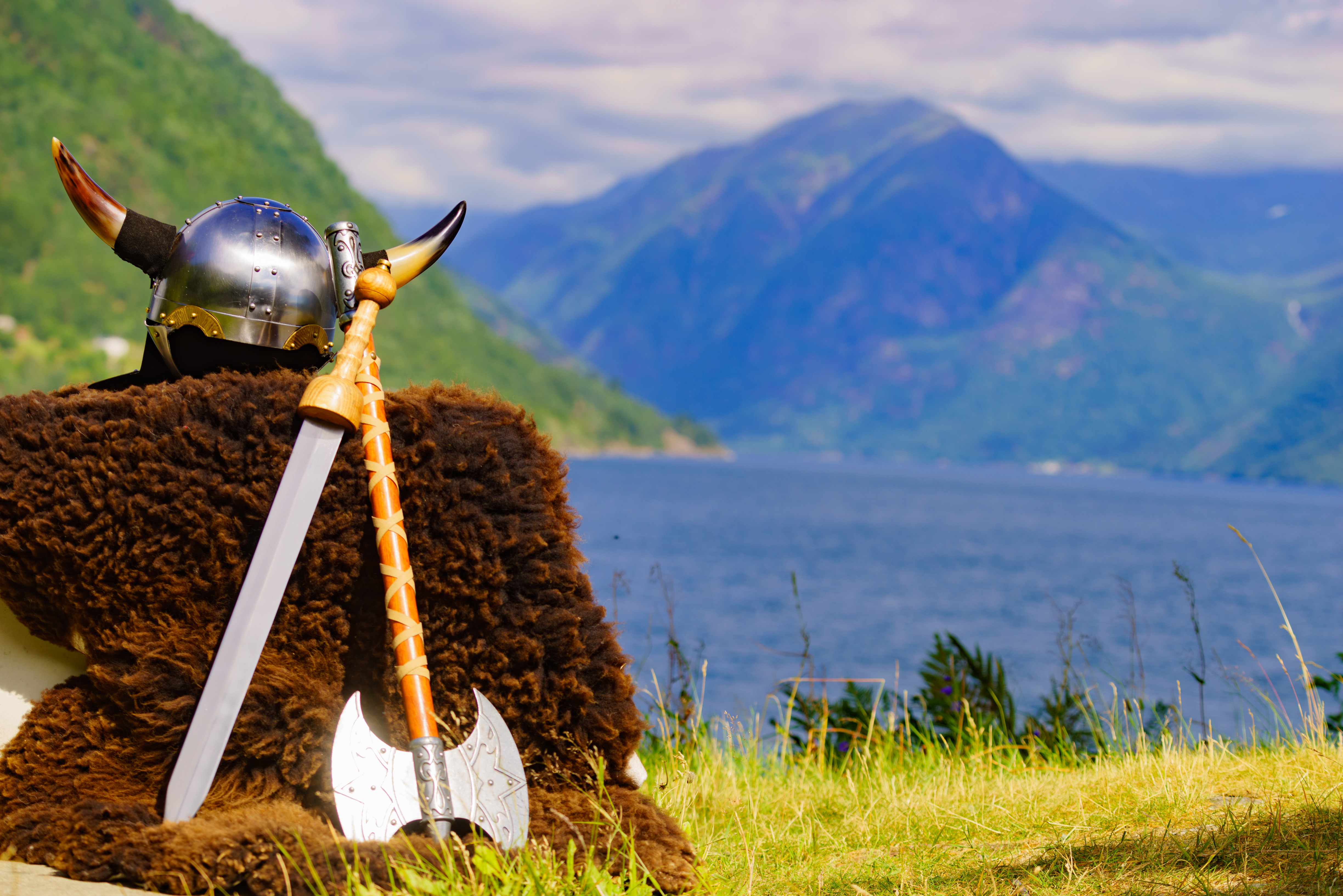 History Who Were The Vikings Level 2 Activity For Kids