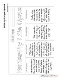 Free Life Science Worksheets & Printables