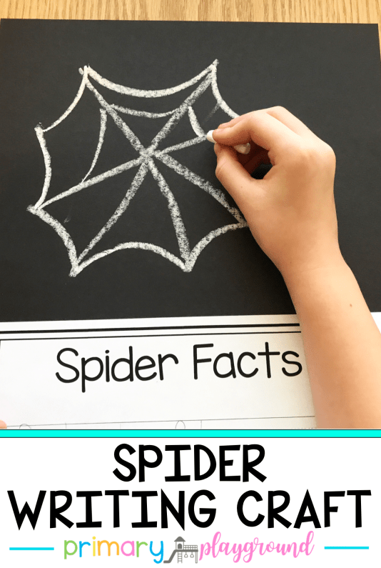 Spider Writing Craft