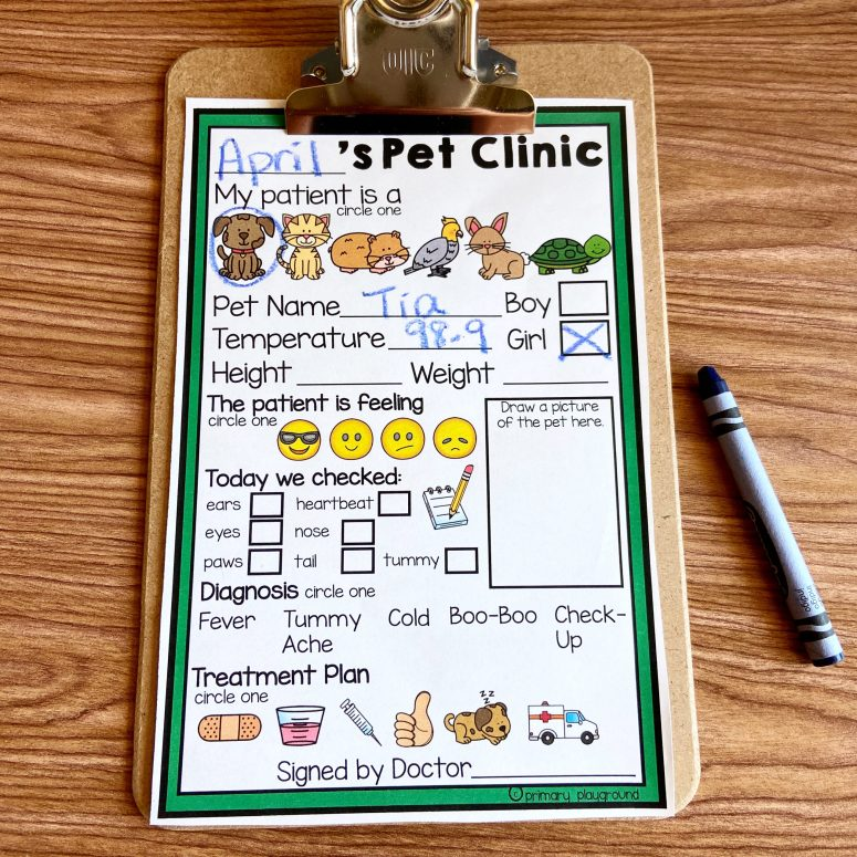 Dramatic Play Pet Vet Clinic Patient Form