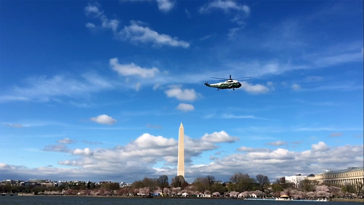 Marine One flies over Tidal Basin during the Cherry Blossom Festival