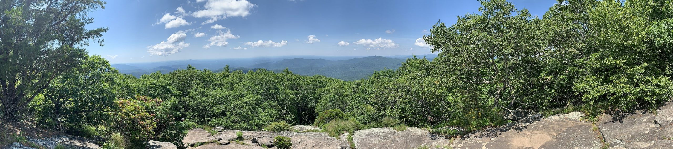 Panoramic view from the peak of Blood Mountain