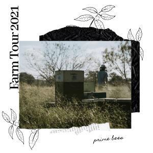 prime bee farm tours 2021