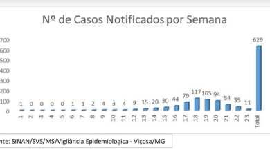 Photo of VIÇOSA DIMINUI NOTIFICAÇÕES DE DENGUE AO LONGO DAS SEMANAS, MAS 293 CASOS JÁ FORAM CONFIRMADOS