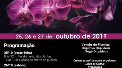 Photo of UFV sedia 14ª Exposição de Orquídeas de Viçosa
