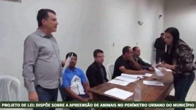 Photo of Prefeitura e Câmara de Cajuri propõe Lei que institui medidas de apreensão de animais no perímetro urbano