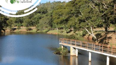 Foto de Planejamento para uso da água permite crescimento sustentável da UFV