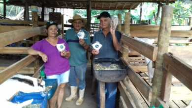 Photo of Sistema FAEMG/Senar Minas distribui máscaras na zona rural de Viçosa e 18 cidades da região
