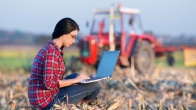 Foto de PÓS-GRADUAÇÃO NO AGRONEGÓCIO: Veja Como Escolher