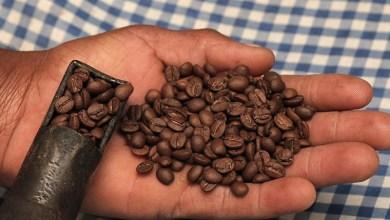 Foto de Senar realiza curso de Torra de Café em Ervália