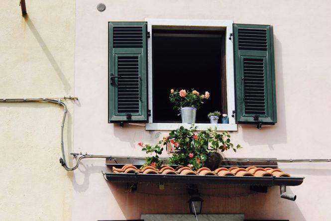 Vaso de flor na janela