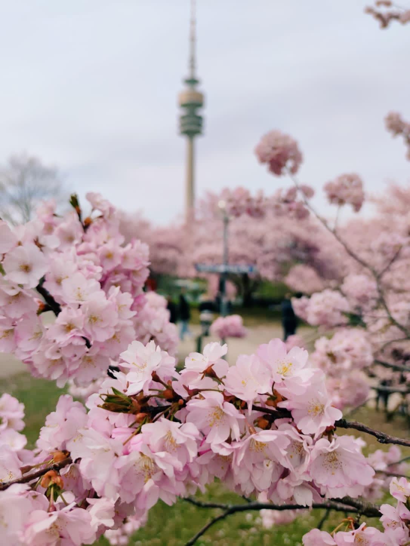 OlympiaPark na Primavera, em Munique na Alemanha