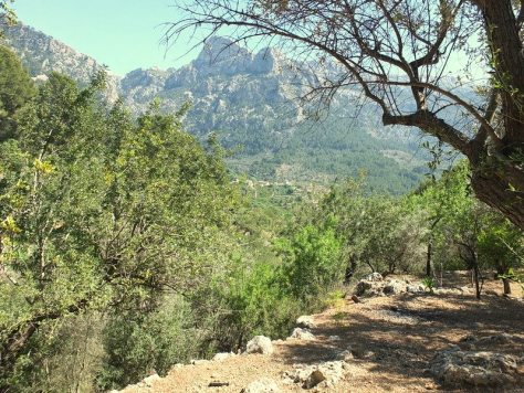 Soller Valley Hikes