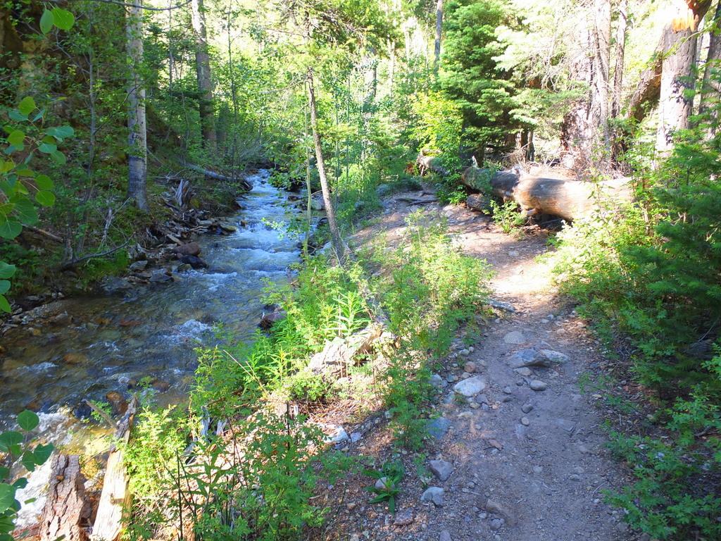 trail along Clear Creek