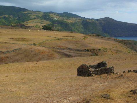 AzoresIslandTrek - DSCF9058.jpg