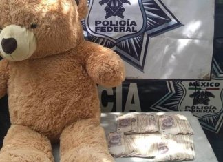 Osito de peluche se convierte en sospechosa alcancía de 200 mil pesos