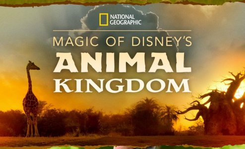animal kingdom series disney+