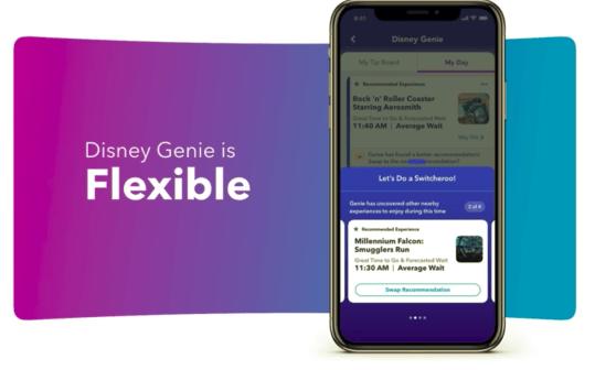 Disney genie flexible