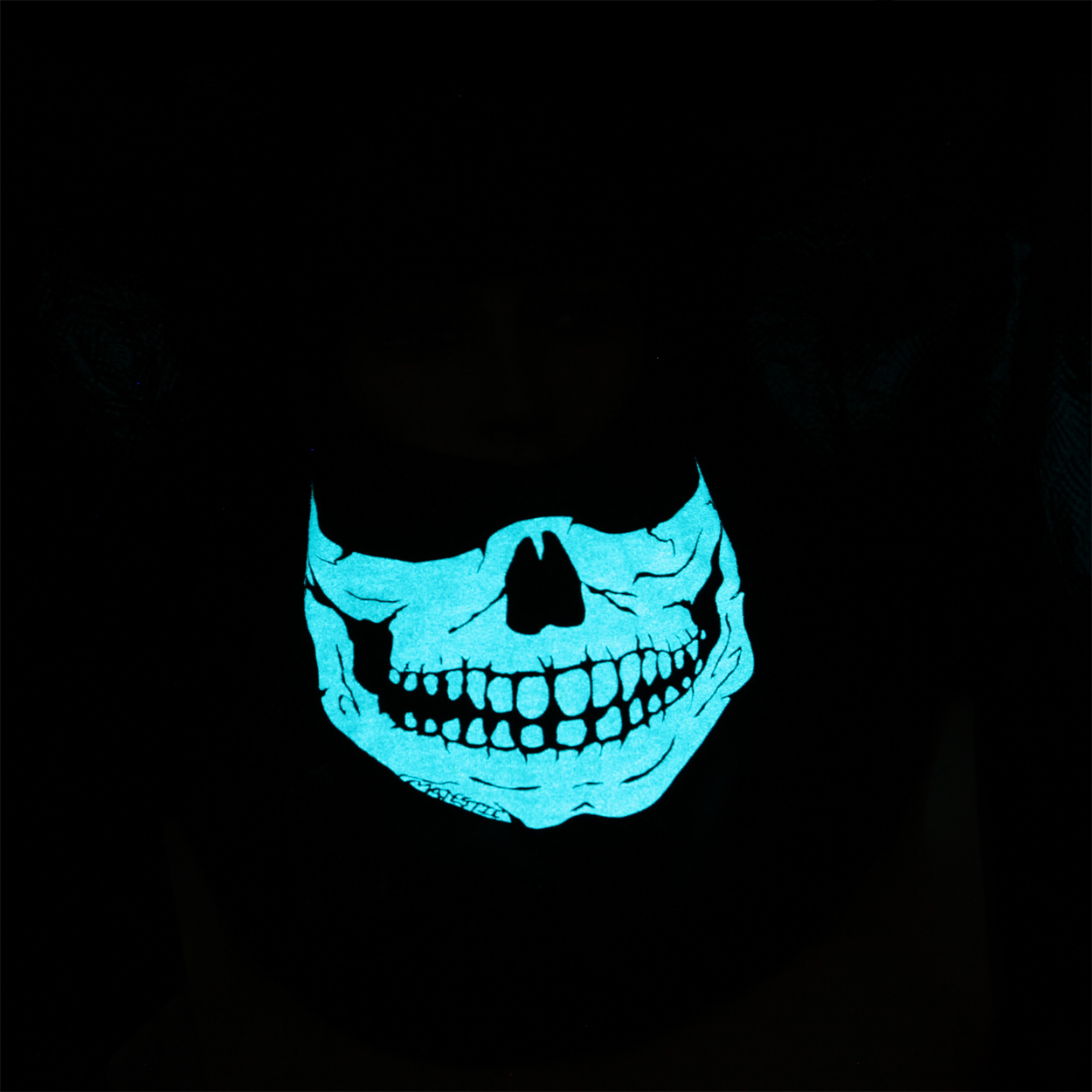 FIRE INK GLOW IN THE DARK BLUE SKULL
