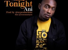 Download Music Tonight Mp3 By Ani