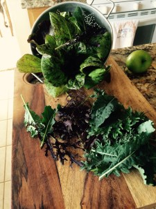 There is nothing better than fresh flavorful farm greens