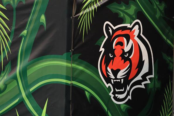 Jungle Talk Episode 3