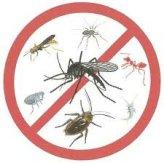 Средства для борьбы с насекомыми и муравьями