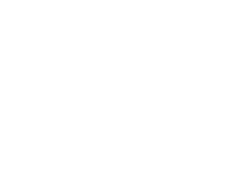 The Descrier - independent news for a local world