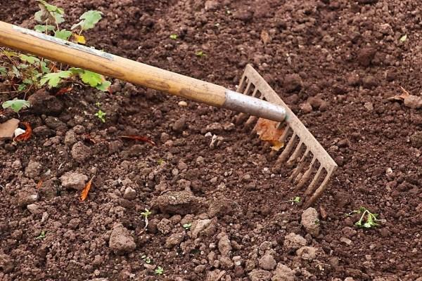working soil in a new garden