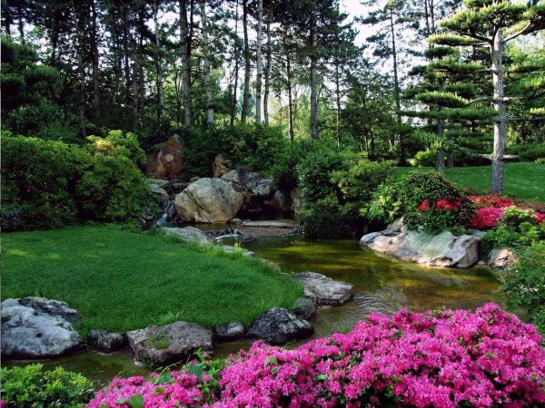 How to Get the Perfect Garden - Pretty flowers by a stream