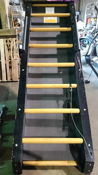 Jacob's Ladder Cardio Machine 2