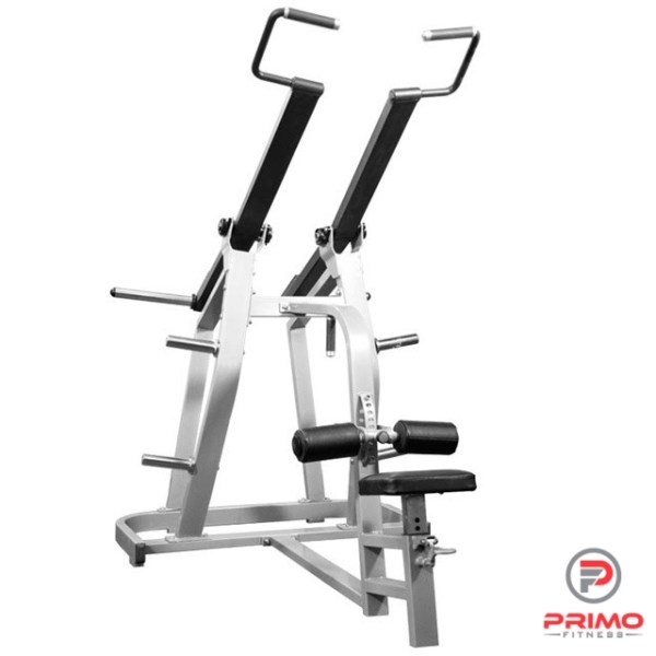 Iso Lateral Lat Pulldown