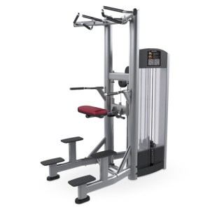 Life Fitness Signature Series Assist Dip Chin