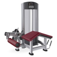 Life Fitness Signature Series Leg Curl