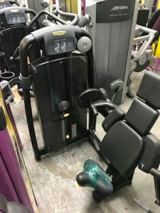 Technogym Arm Curl