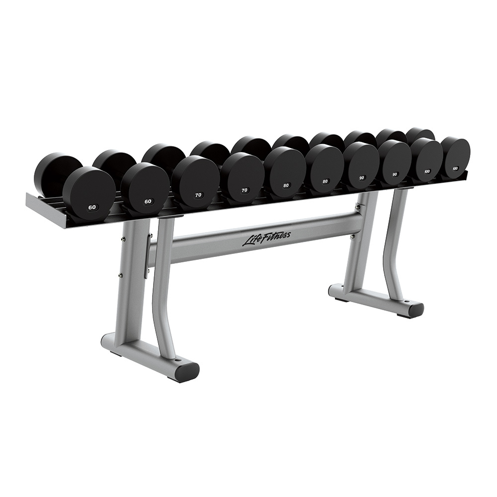 Life Fitness Signature Series Single Tier Dumbbell Rack