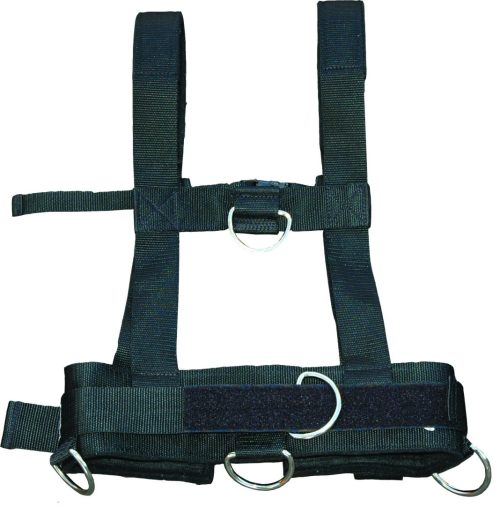 Work horse Harness-Back-Product