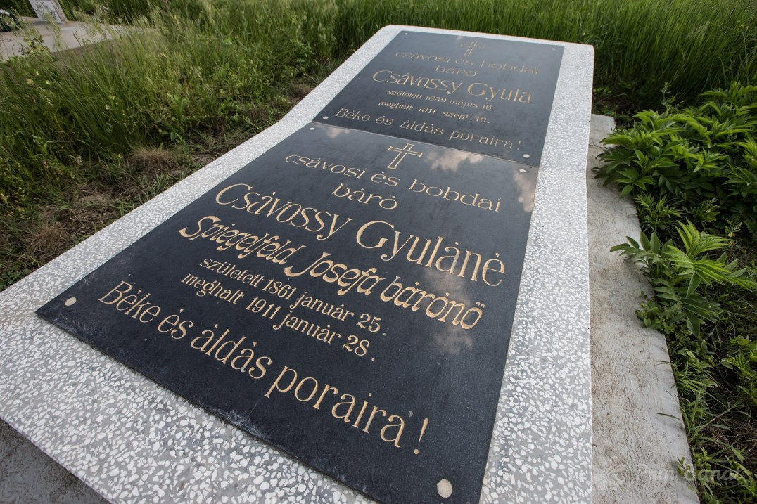Mormânt Csavossy