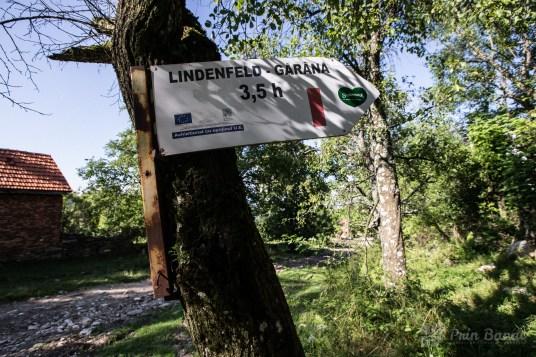 Lindenfeld - Gărâna