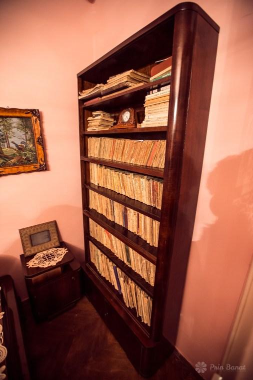 Biblioteca străbunicului lui Marius Matei