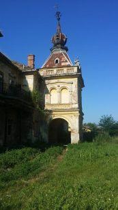 The Mocsonyi Castle from Vlajkovac, photo taken by Miruna Crâşnic