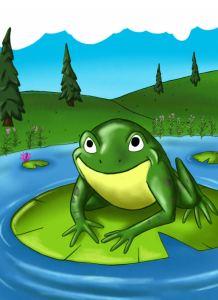 Mr. Bull Frog