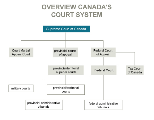judicial branch court system diagram lewis dot for h2co the in canada princessangha above chart