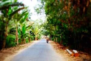 Exploring the quiet back roads