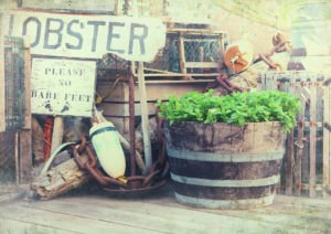 Image of lobster pots, buoys and fishing equipment on the quaysi