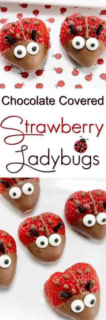 Chocolate Covered Strawberries Ladybugs - this little critters are the perfect healthy dessert for a summer party or Valentine's Day. Great food craft to make with your kids