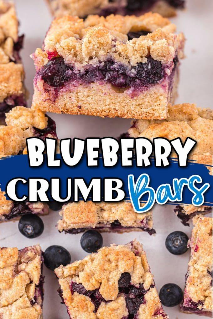 Blueberry Crumb Bars pinterest