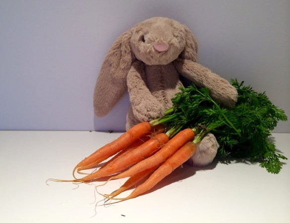 Share a carrot with somebunny near you - they're a bargain because they're in season in the Garden State.